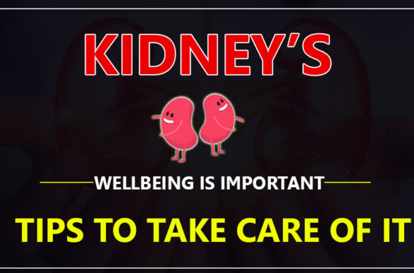 Kidney's Wellbeing is Important